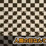 自分の目を信じられなくなるチェスボードの錯覚動画