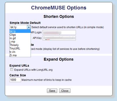 オプション設定で、API Keyを設定可能