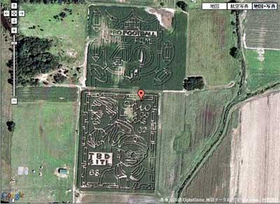 Corn-Mazes.jpg