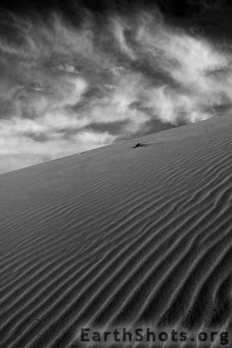 Desert-Playground.jpg