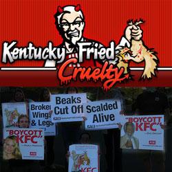 KFC-Protesters.jpg