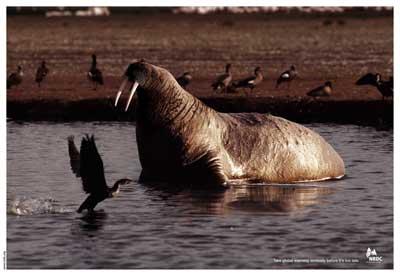 NRDC-Seal.jpg