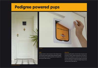 Pedigree-High-dog-flap.jpg