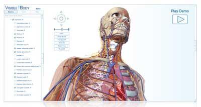 人体模型を3Dモデル化