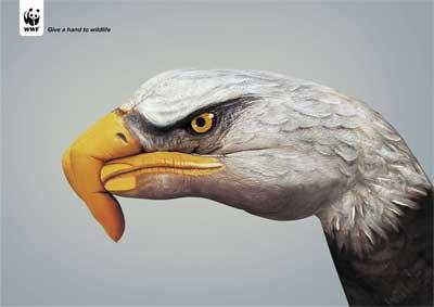 WWF-Eagle.jpg