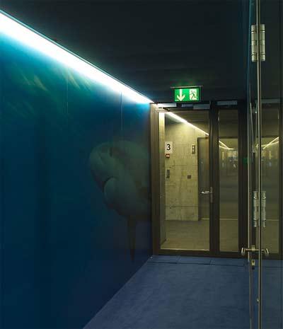dangerous-corridor.jpg
